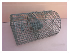 Metal Cages for Catching Mouse